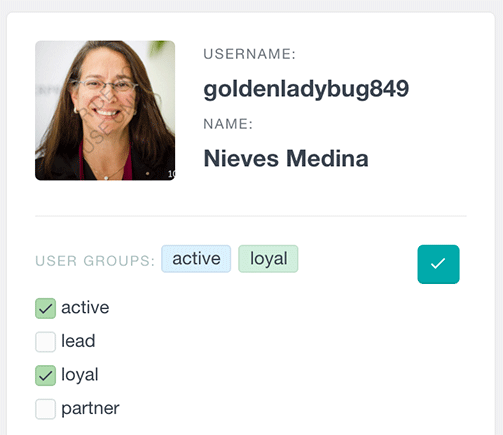 users-insights-assign-groups-to-user