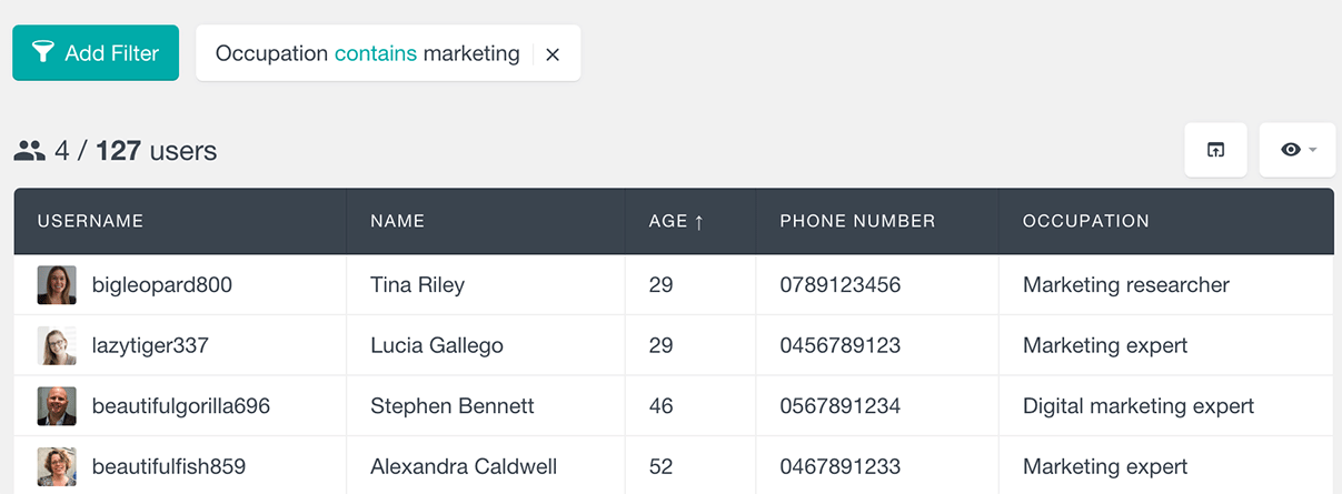 users insights filter by text custom field