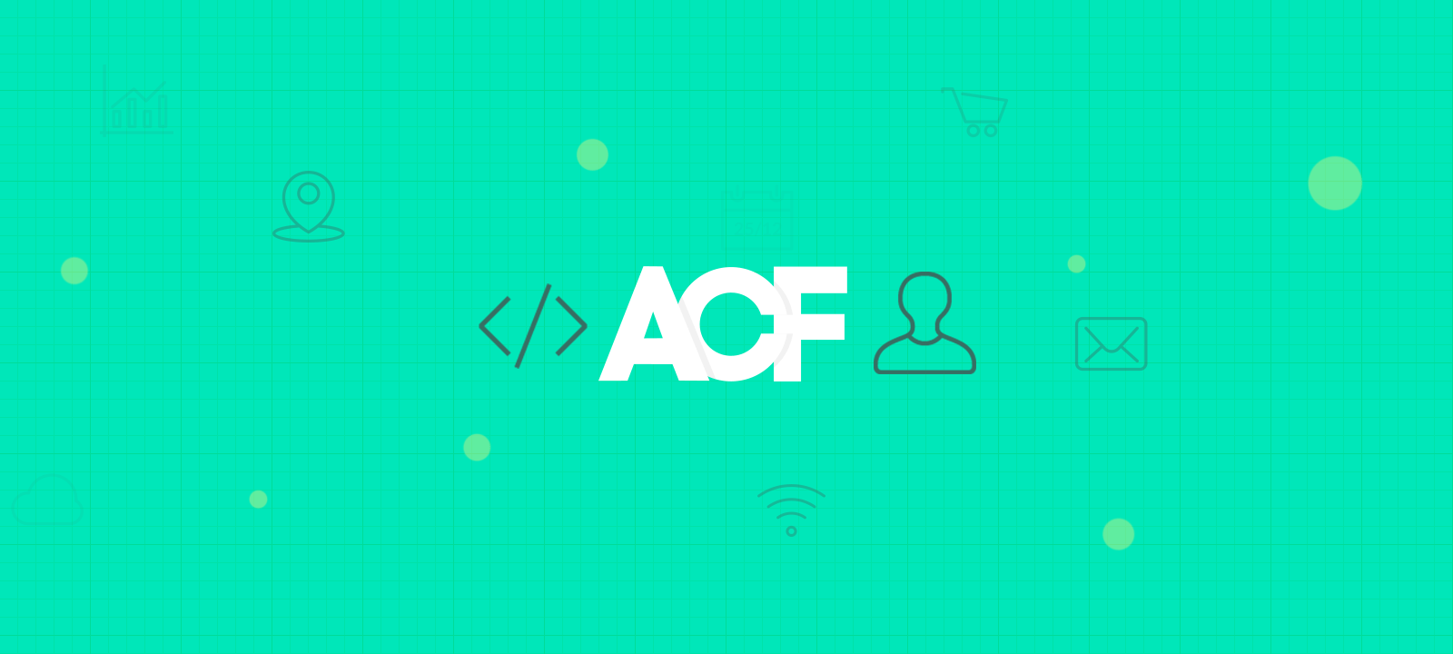 Creating custom user profile pages with ACF - Users Insights