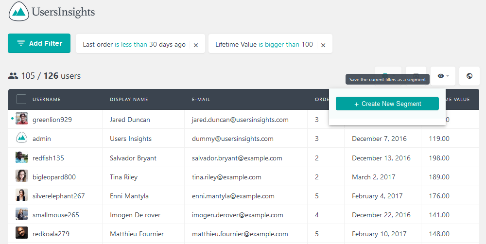 Creating a new segment in Users Insights